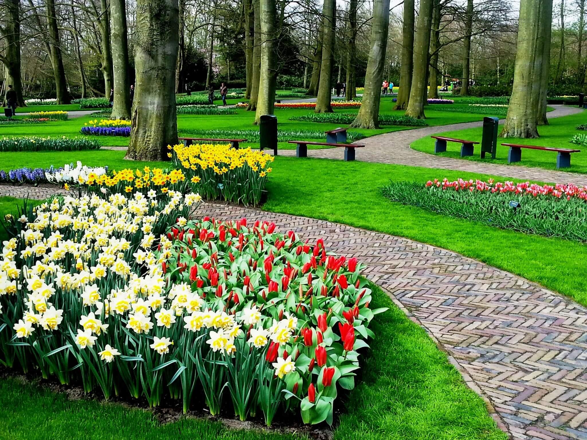 הולנד, מרכז קדם לטיולים